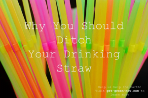 Ditch Plastic Drinking Straws