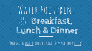 How much Water does it take to make your Breakfast, Lunch and Dinner? [Infographic]