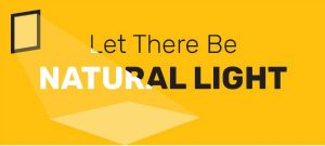 How to Effectively Use Natural Light in your Home (Save Money and Energy!)