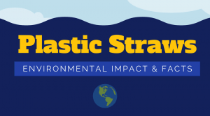 The Environmental Impact of Plastic Straws – Facts, Statistics, and Infographic