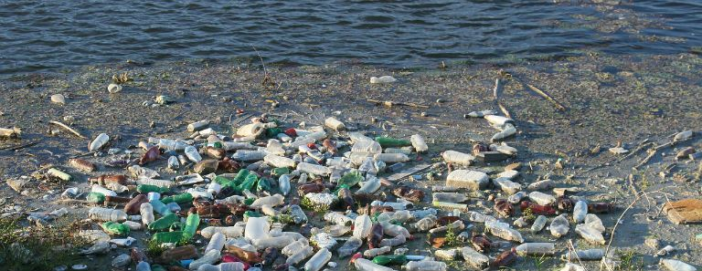 Plastic bottles littered and polluting a beach