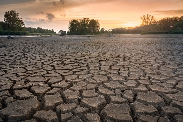 Cracked ground due to dryness from a drought