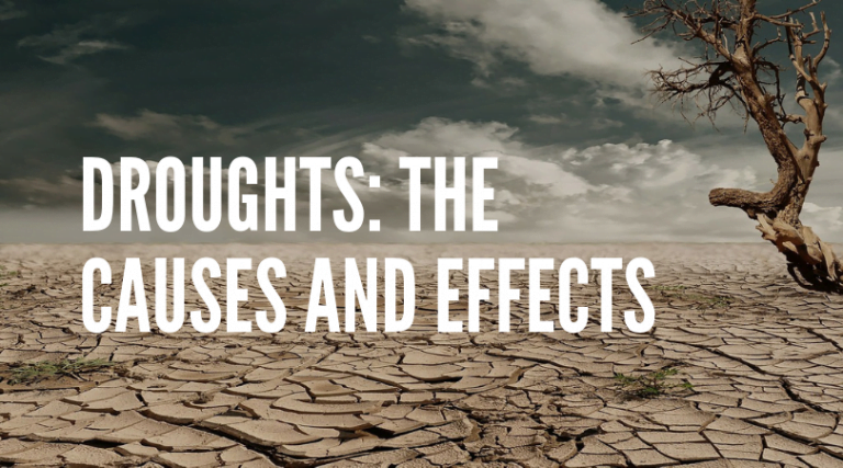 Why Do Droughts Happen? — Causes, Effects, and 7 Ways to Help