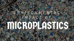 How Do Microplastics Affect The Environment?