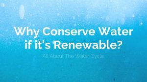 Why Conserve Water if it's Renewable? (All About The Water Cycle)