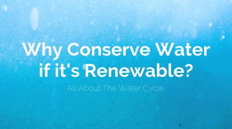 Why Conserve Water if it's Renewable? [Importance & Benefits of Conserving Water]