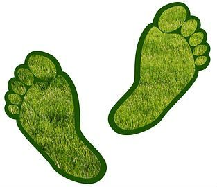 Image of a green footprint