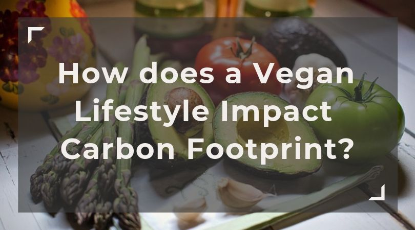 How does a Vegan Lifestyle Impact your Carbon Footprint?