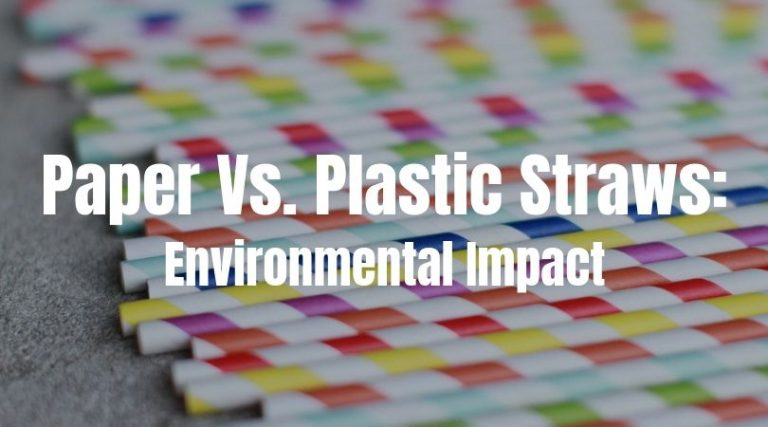 Paper vs. Plastic Straws: Is Paper Really Better for the Environment?