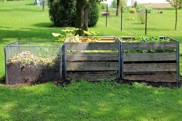 Compost Bins and Gardens