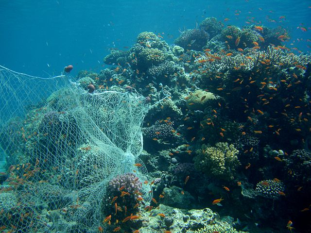 Ghost fishing net tangled on a coral reef