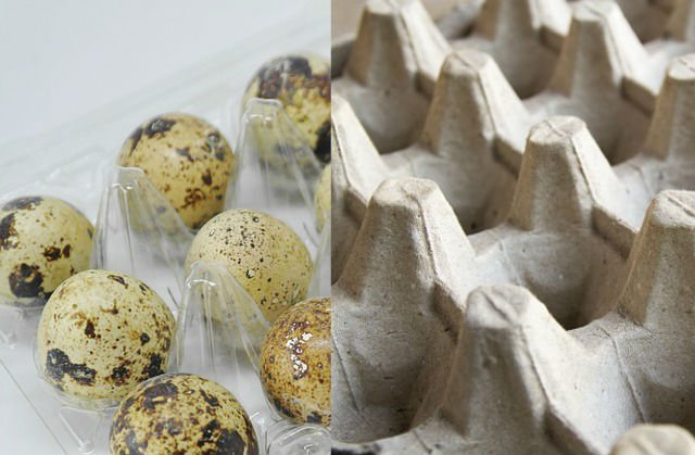 Plastic vs Paper Egg Carton Packaging