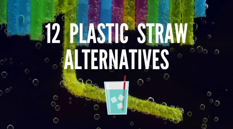 12 Best Plastic Straw Alternatives (My 2019 Recommendations