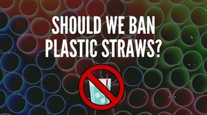 Should Plastic Straws Be Banned? [Pros & Cons of a Straw Ban]