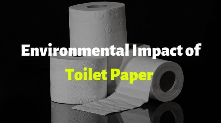 The Impact of Toilet Paper on the Environment (Effects & Facts)