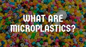 What Are Microplastics and Why Are They a Concern? (Everything You Need To Know)