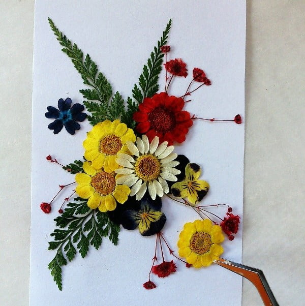 Pressed Flowers Craft - 17 Eco-Friendly Arts and Crafts Projects