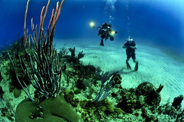 Scuba Diving in a Coral Reef - Sustainable Diving & Snorkeling Guide